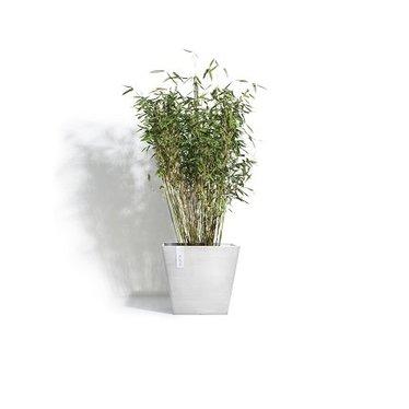 Pot Ecopots Rotterdam blanc-gris 15po