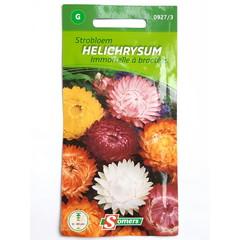 Helichrysum Immortelle G