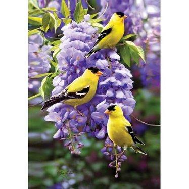 Drapeau oiseaux goldfinch wisteria