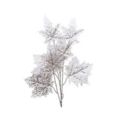 Signé Garneau Tige feuilles d'érable argent