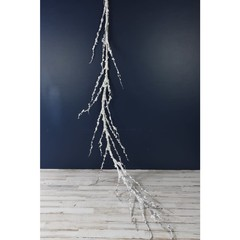 Branche enneigée blanc naturel