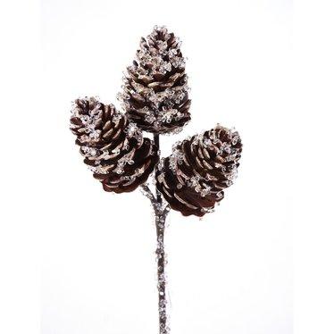 Tige de cocottes gelées