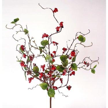 Tige enneigée baies rouges