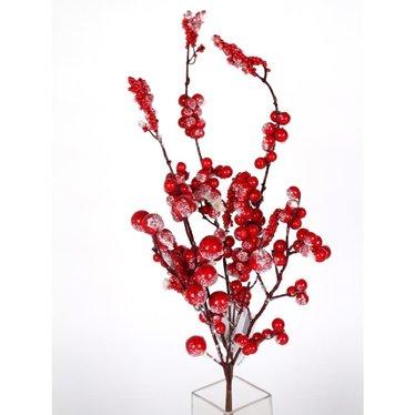 Tige baies enneigées rouge