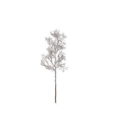 Branche enneigée scintillante