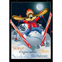 Drapeau - Le skieur