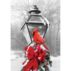 Drapeau - Lanterne et cardinal