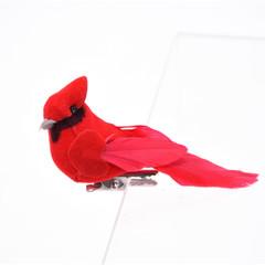 Cardinal (12) avec pince
