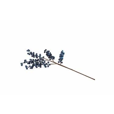 Tige de bleuets gelés