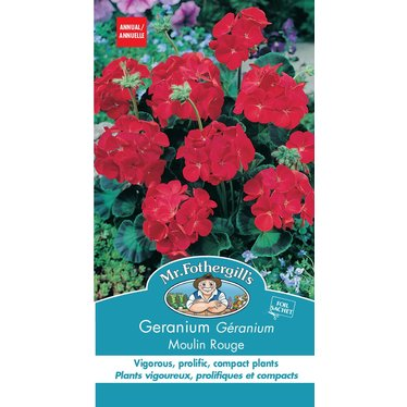 Geranium Moulin rouge