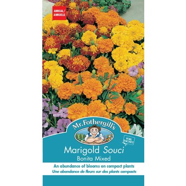 Marigold Bonita Mixed