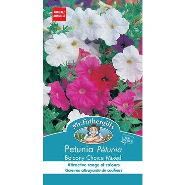 Petunia Balcony Choice Mixed
