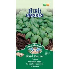 Basilic Sucre