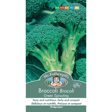 Brocoli Green Sprouting