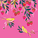 Carte - Oiseaux et fraises