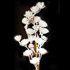 Tige de fleurs blanches et cocottes 60 cm