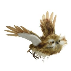 Hibou brun volant suspendu