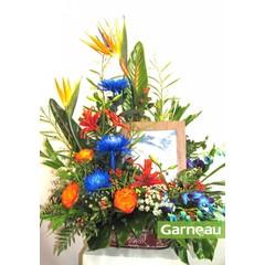 Encadrement floral AF-052
