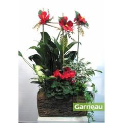 Jardin de plantes et fleurs de soie TO-036