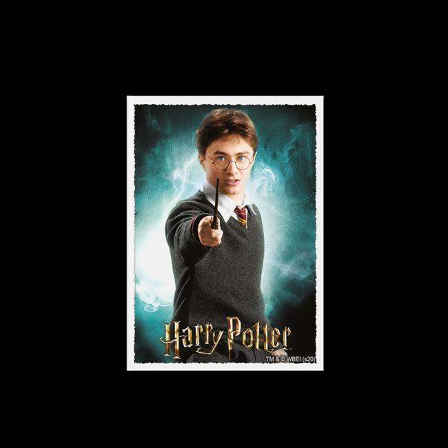 Harry Potter Standard Matte Sleeves 100 ct - Dragon Shield