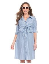 Seraphine Maternity 'Ariadne' Pinstripe Shirt Nursing Dress