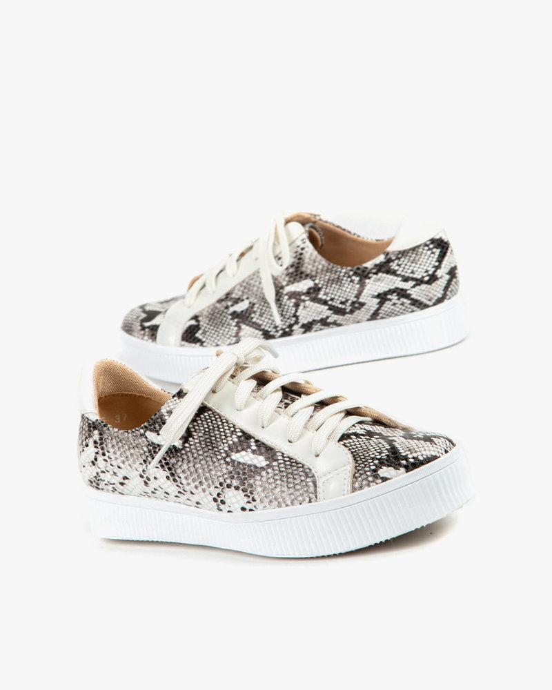 All Black All Black Exotic Flatform Sneaker in White