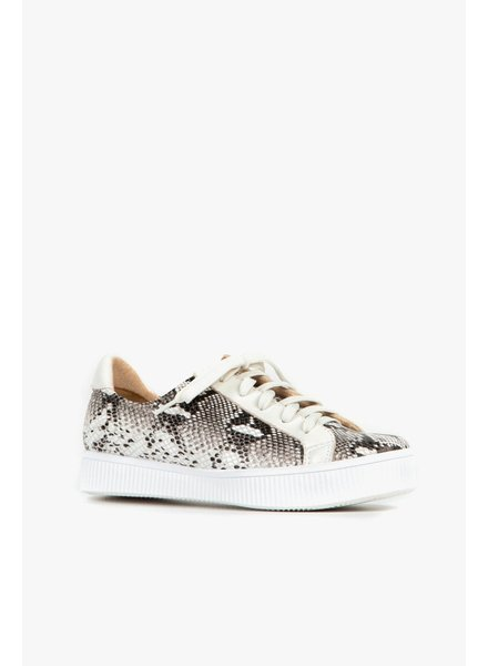 All Black Exotic Flatform Sneaker in White **FINAL SALE**