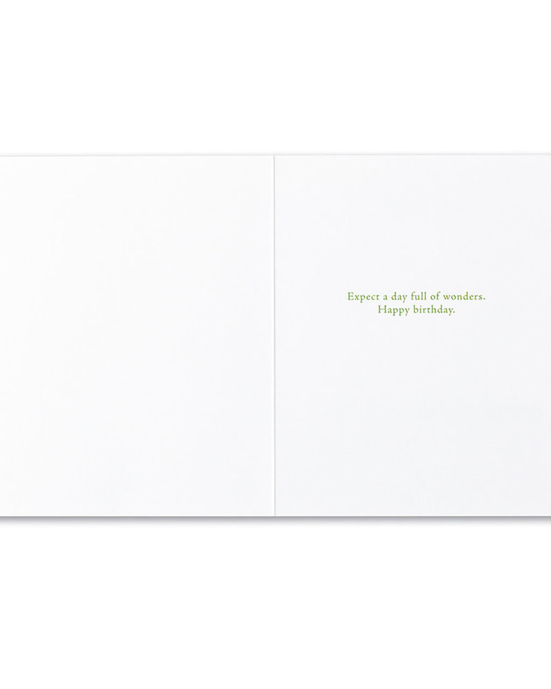 Compendium Compendium Birthday Card | 'She Quietly Expected Great Things'