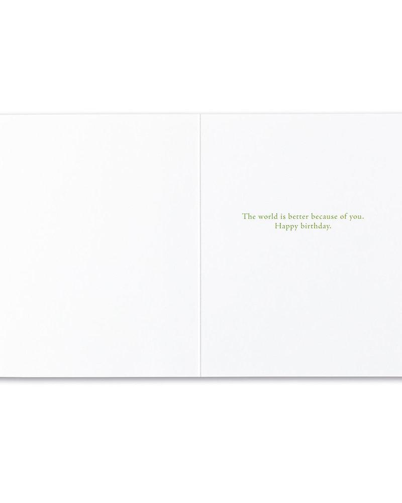 Compendium Compendium Birthday Card | 'A Possibility Was Born'