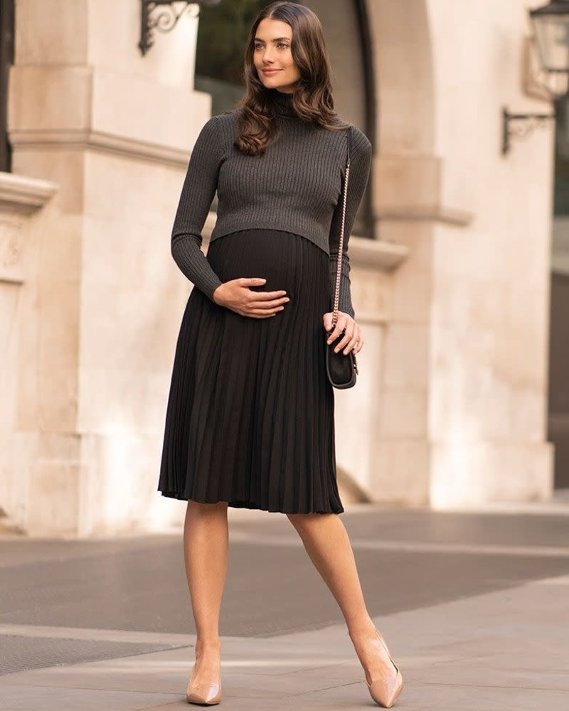 Seraphine Maternity Seraphine 'Marie' 2-In-1 Maternity/Nursing Dress **FINAL SALE**