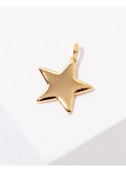 Larissa Loden BYO Star Charm