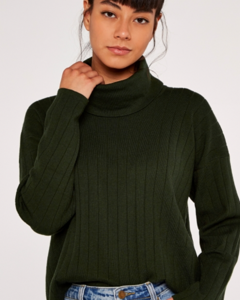Apricot Apricot 'My Neck of the Woods' Sweater