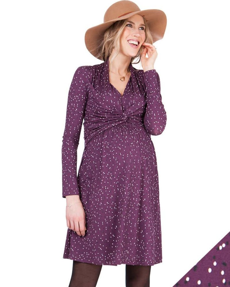 f41b88f876c99 Seraphine Maternity Seraphine Maternity 'Helen' A-Line Nursing Dress  (Medium) ...