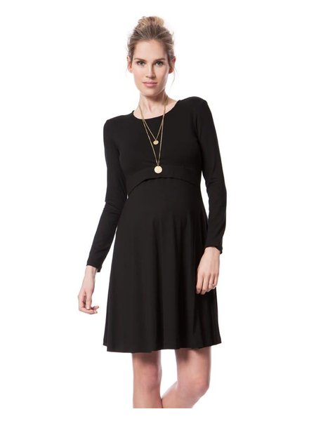 Seraphine Maternity 'Zelda' A-Line Maternity/Nursing Dress