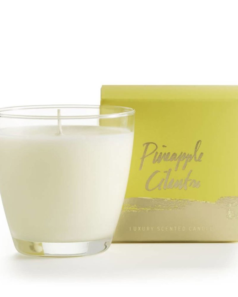 Illume Candles Illume Candles Demi Boxed Glass in Pineapple Cilantro