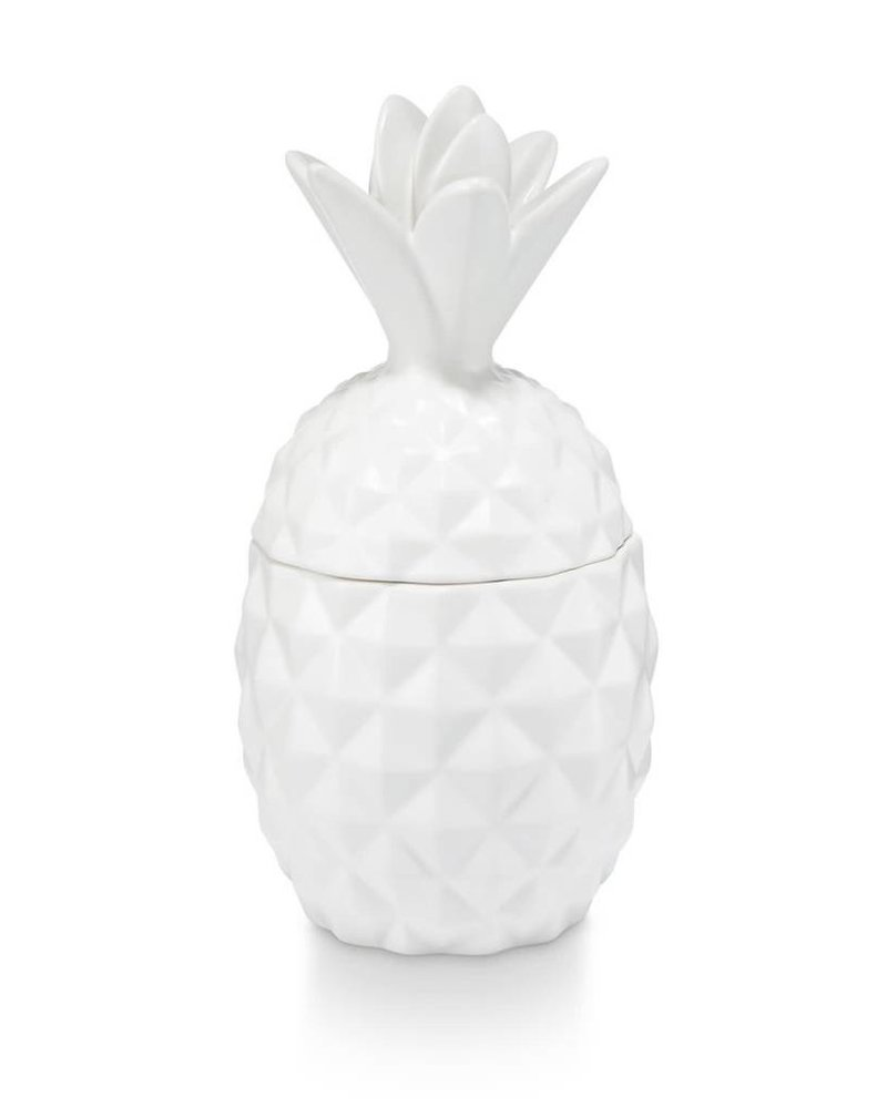 Illume Candles Illume Ceramic Pineapple Candle in Pineapple Cilantro