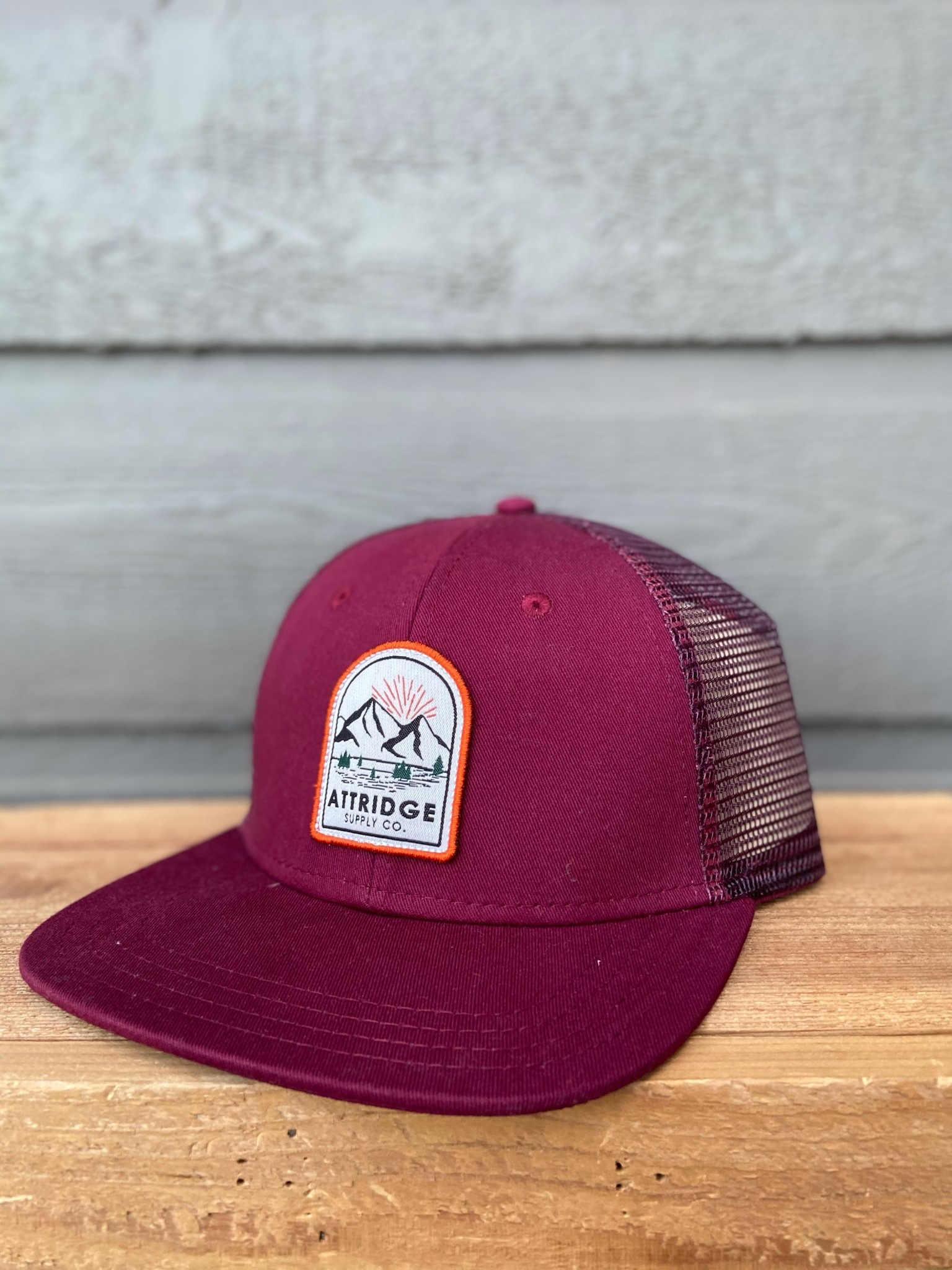 Attridge Mountain Patch Hat-4