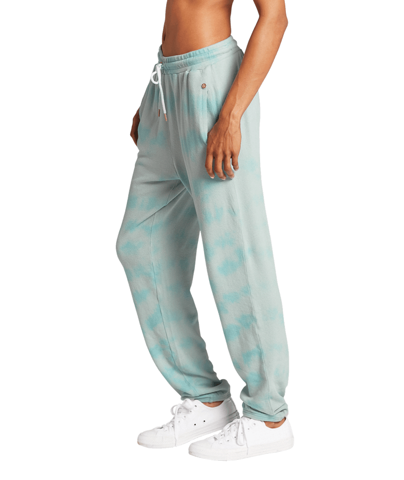 LIVED IN LOUNGE FLEECE PANT-5