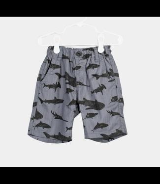 Grey Shark Shorts