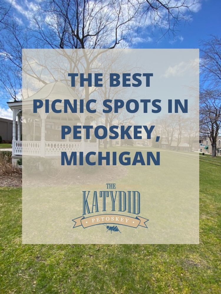 The Best Picnic Spots in Petoskey
