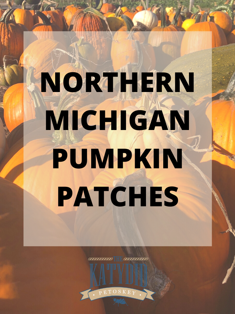 Northern Michigan Pumpkin Patches