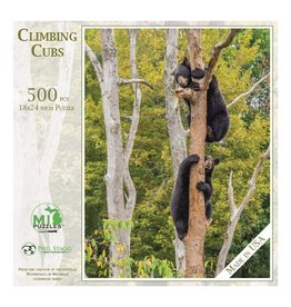 CLIMBING CUBS PUZZLE