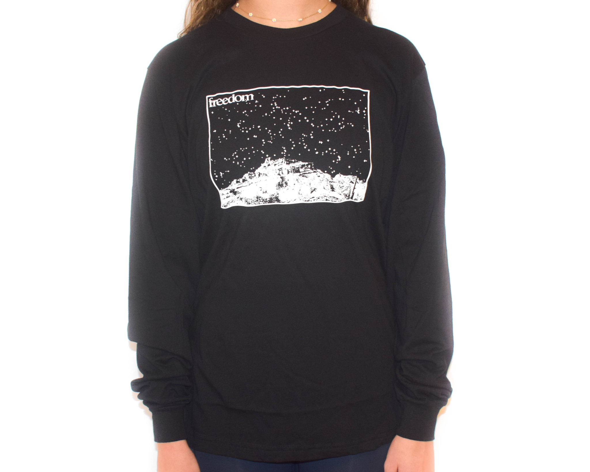 Freedom Boardshop TEE-FREEDOM SKYLINE L/S