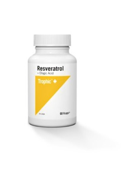 Resveratrol + Ellagic Acid - 60 caps