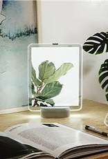 GLOWING FLOATING PICTURE FRAME- Nickel, 8x10