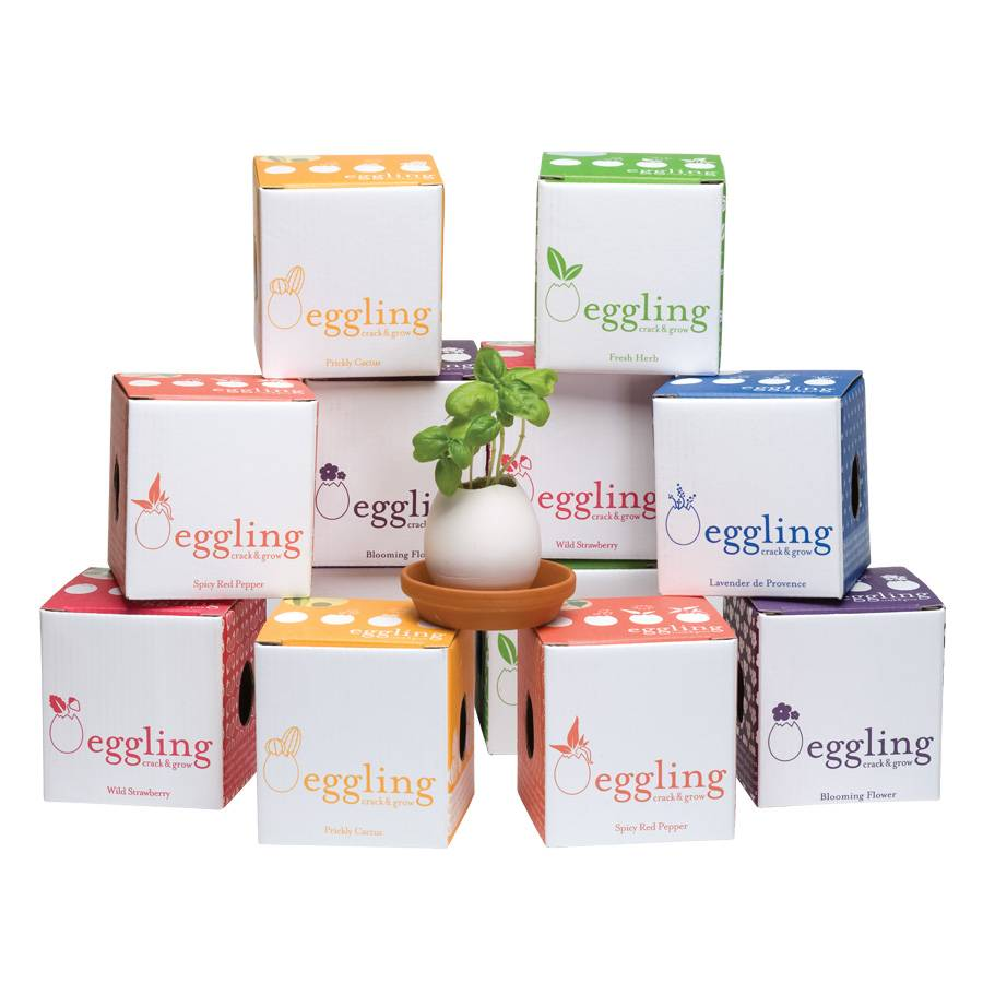 Eggling - Planter Kit - Basil