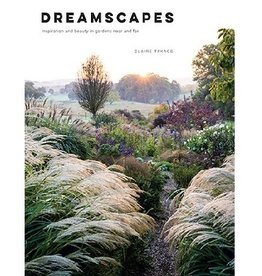 Dreamscapes: Inspiratio