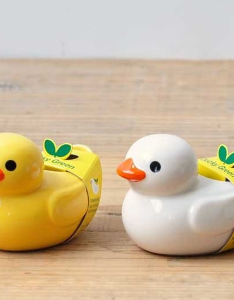 Ducky Green - Assorted 2 Colors/Styles
