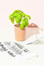 Modern Sprout Harvest Gift Set