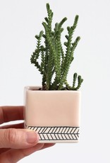 Benotti Square Planter Herringbone - Small:Summer Sweet